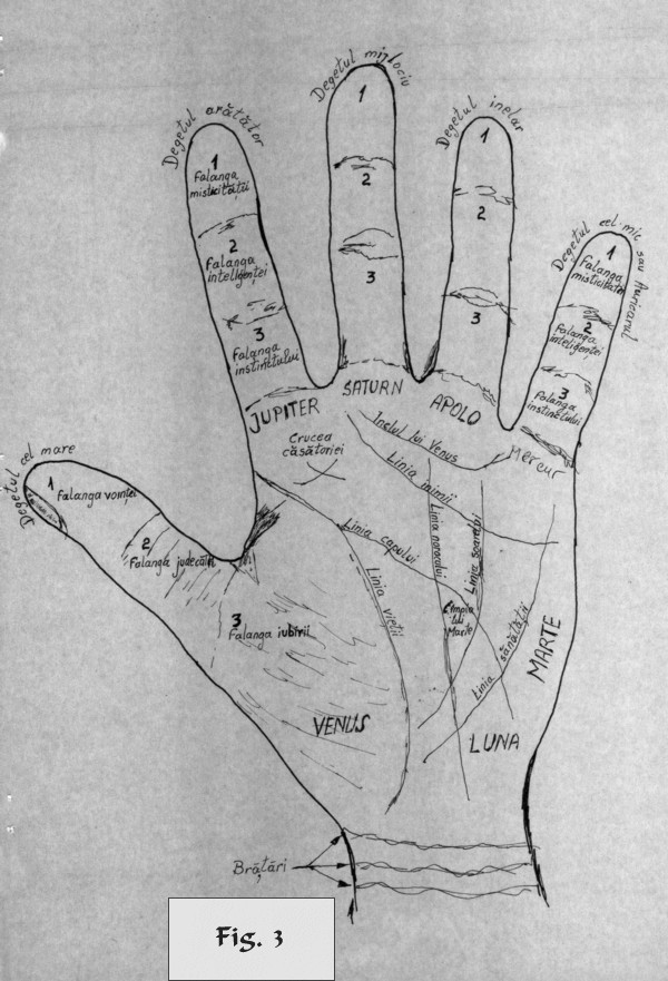 figure 3 - palm reading