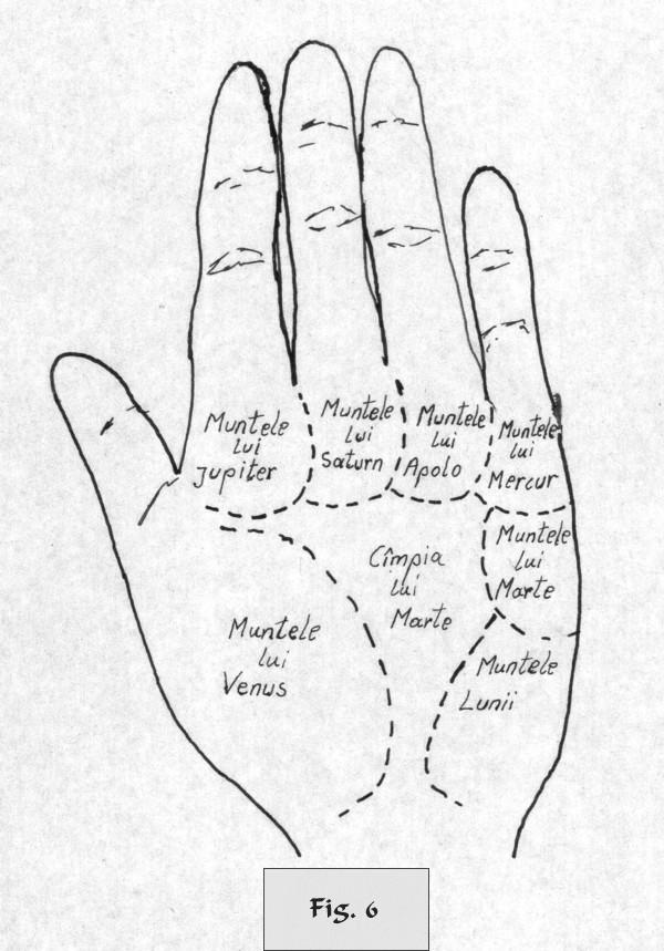 figure 6 - palm reading
