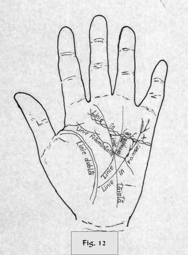 figure 12 - palm reading