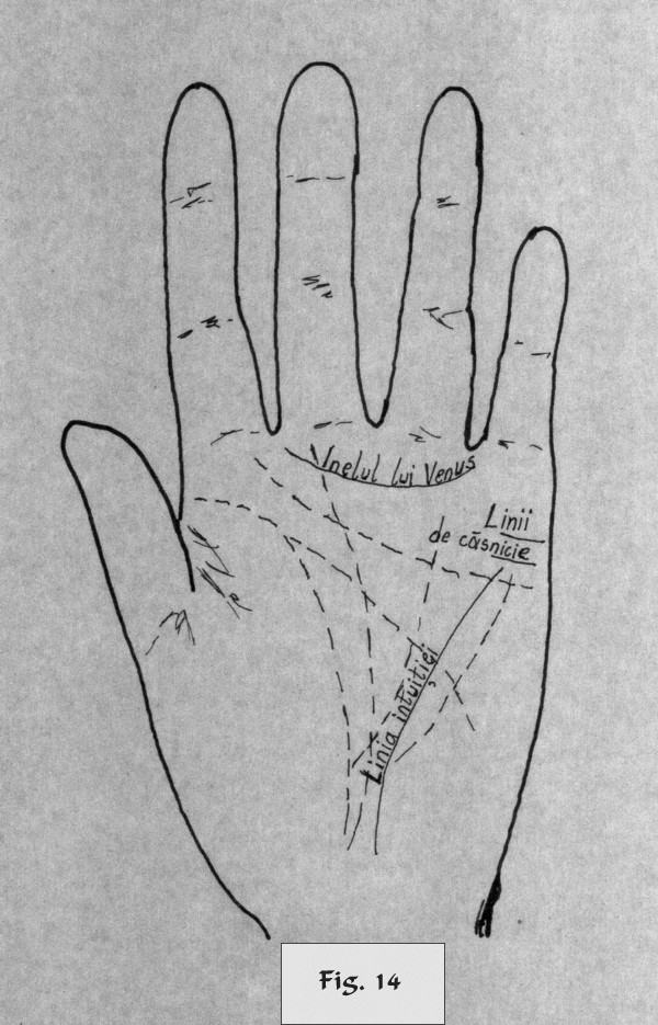 figure 14 - palm reading
