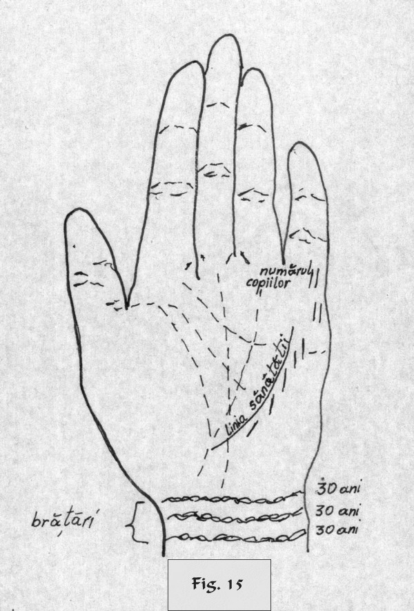 figure 15 - palm reading