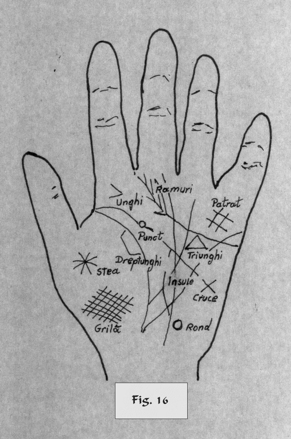 figure 16 - palm reading