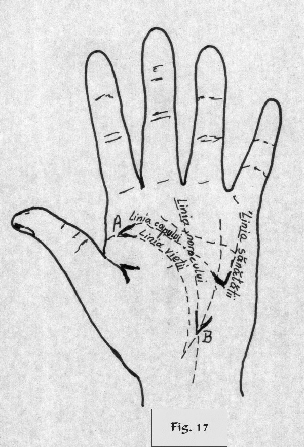 figure 17 - palm reading
