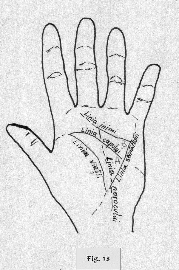 figure 18 - palm reading