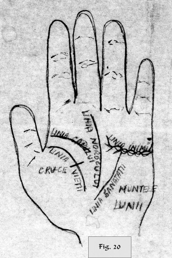 figure 20 - palm reading