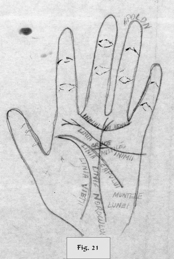 figure 21 - palm reading