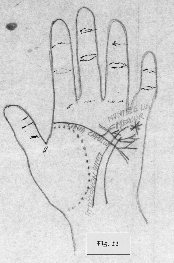 figure 22 - palm reading