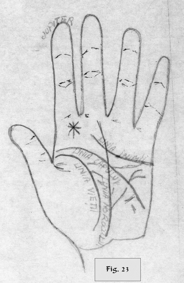 figure 23 - palm reading