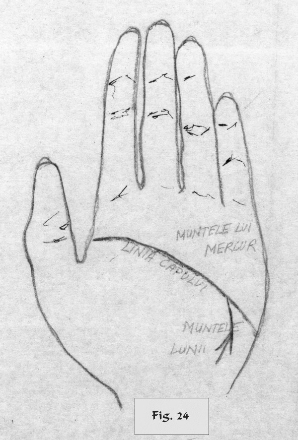 figure 24 - palm reading